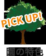 PICKUP!園の特色