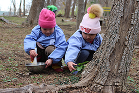 森での活動1