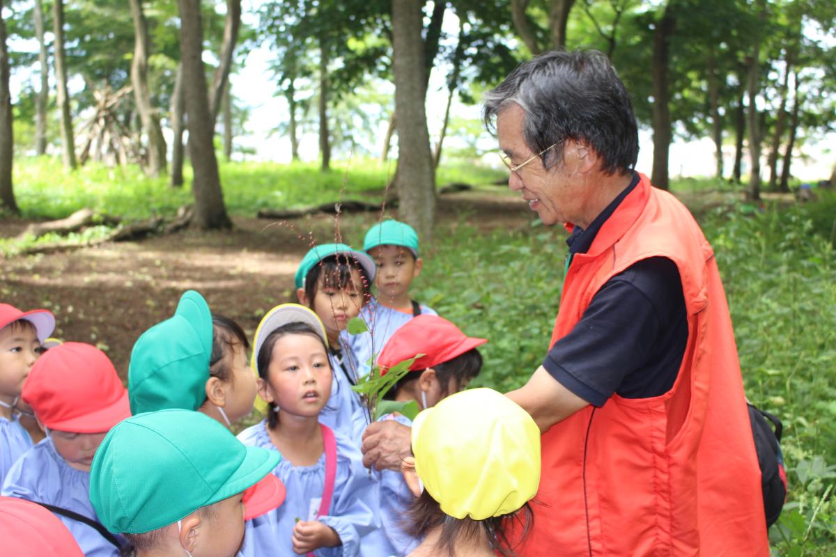 秋の草花に触れる先生と子どもたち