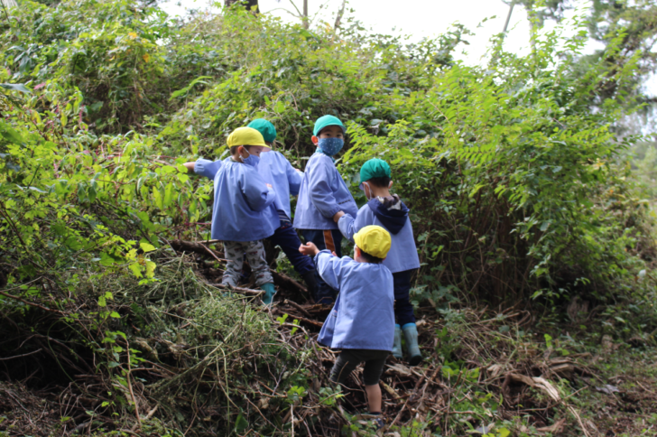 森の探検に出かけるという男の子たち