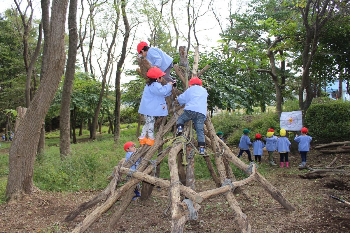 木登りを楽しんでいる3才児