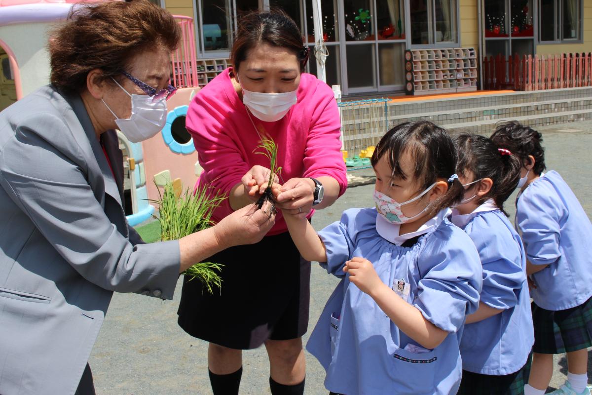 園長先生からお米の苗を受け取る4才児