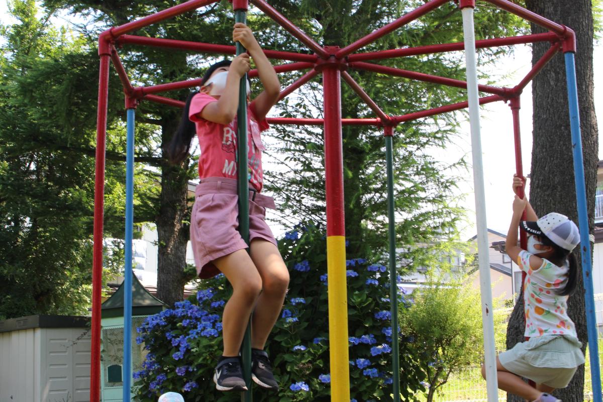 お山で遊ぶ小学生の様子(登り棒)