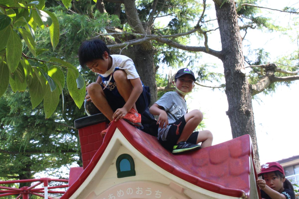 お山で遊ぶ小学生の様子