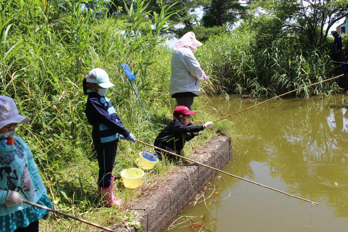 ザリガニ釣りをする小学生の様子