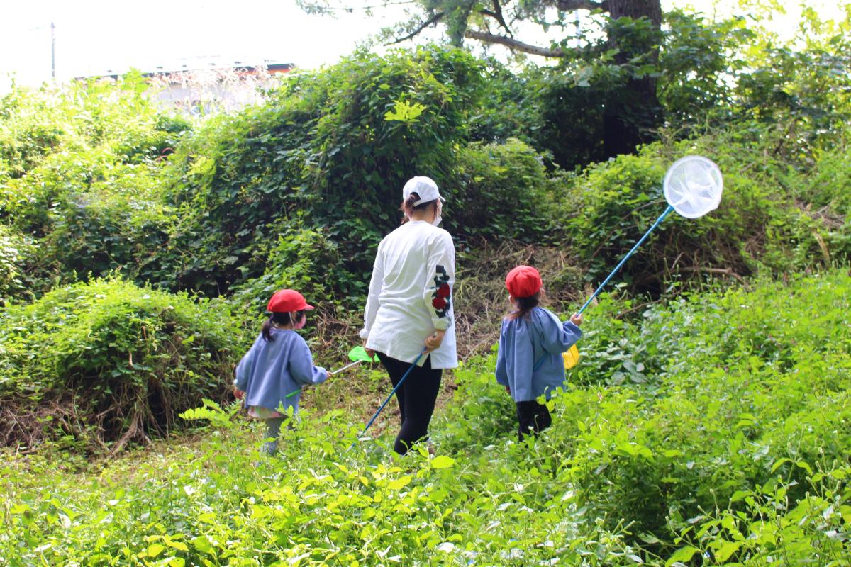 虫捕りに夢中の4才児の様子